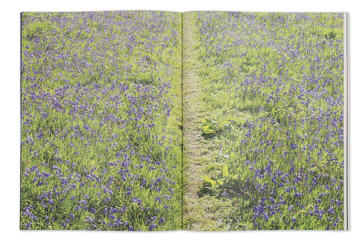Garry Fabian Miller - Seeing Believing artist book wildflowers