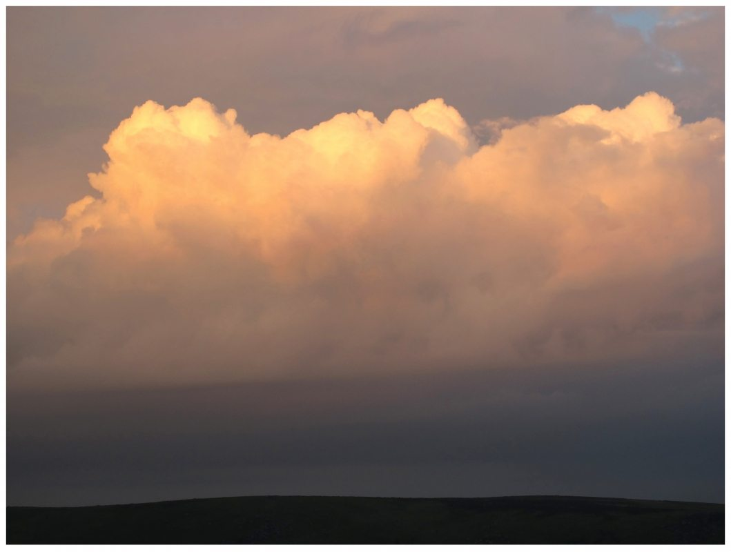 Garry Fabian Miller - Palmers Cloud, looking south to Hamel Down, Winter 2014