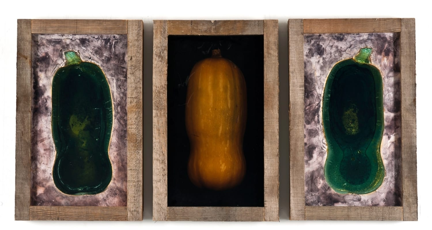 Pascal Kern-HackelBury Fine Art-three photographs of squash in wooden frames