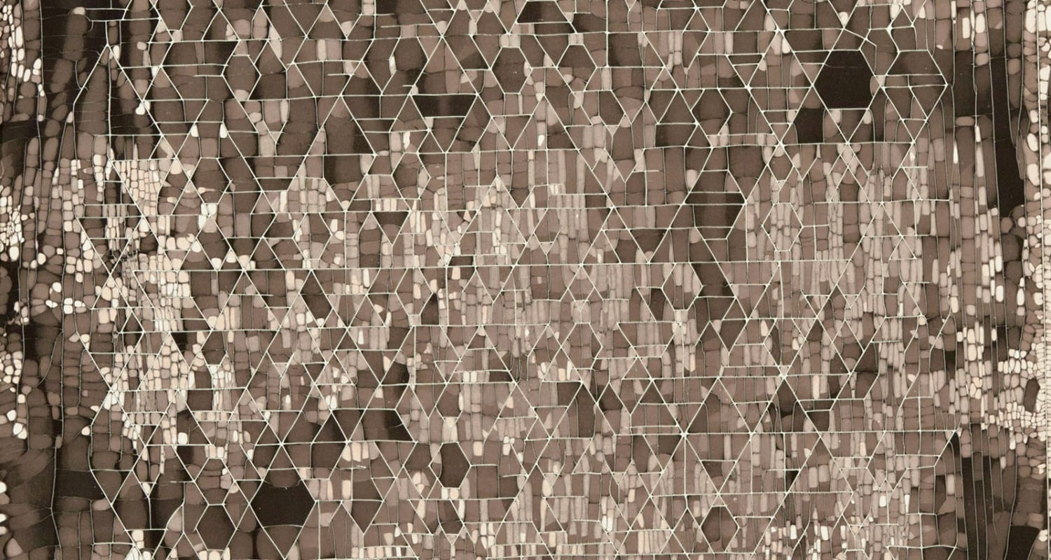 Pierre Cordier - image detail - camera less photograph - abstract brown diamonds - HackelBury Fine Art