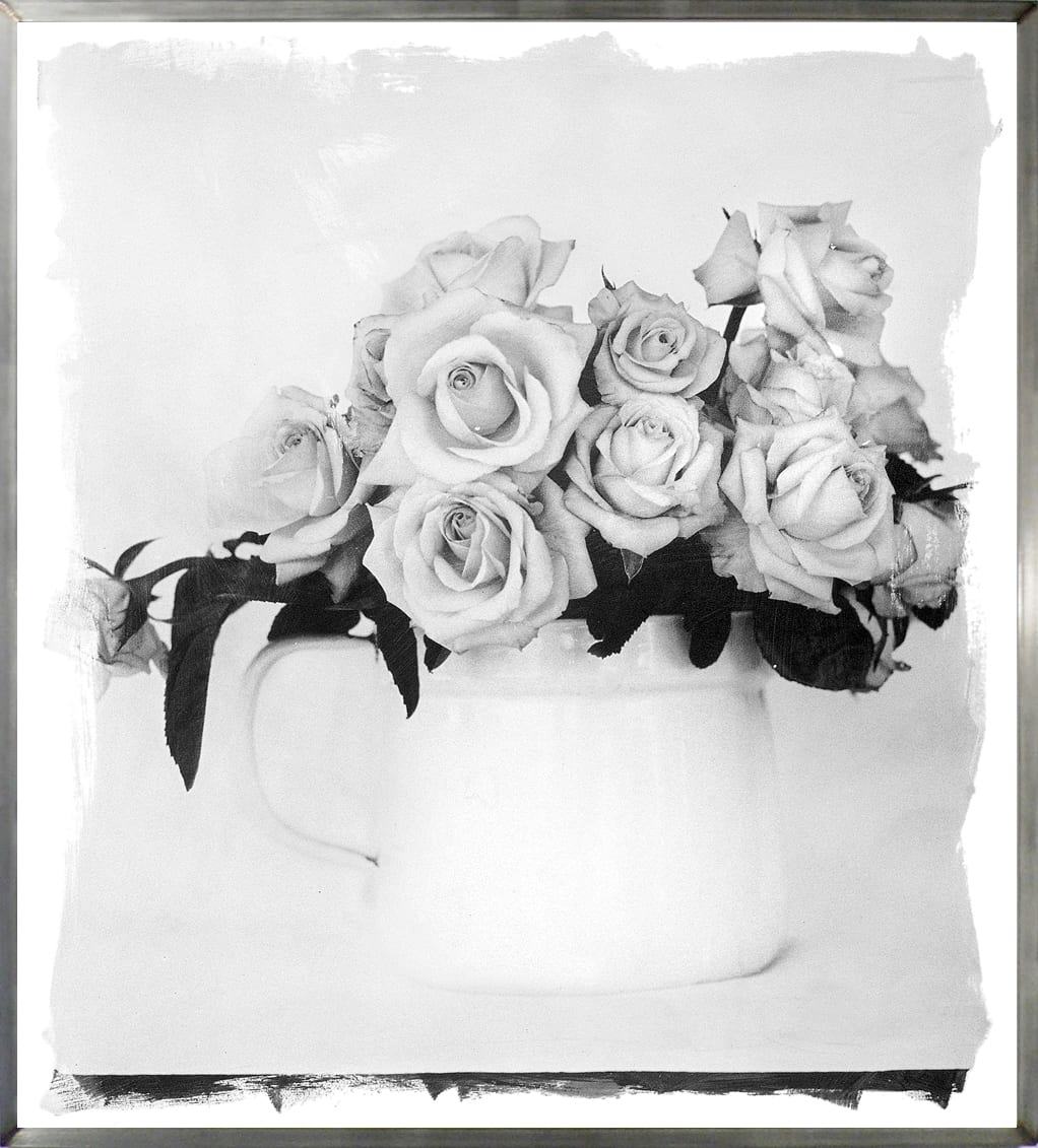 Stephen Inggs artwork-black and white photograph of roses