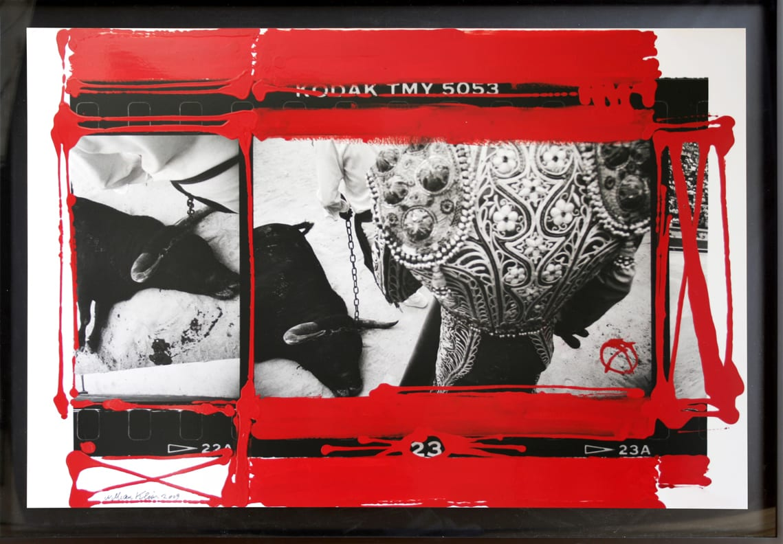William Klein close up of bull, red painted frame